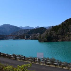 四季折々953  桜の宮ケ瀬湖
