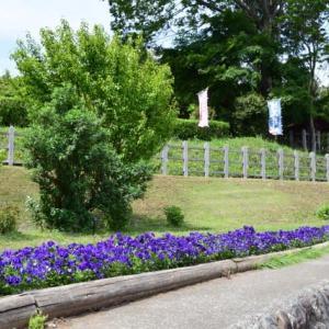 四季折々923  新緑の津久井湖城山公園