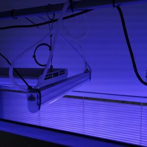 UV照射開始!
