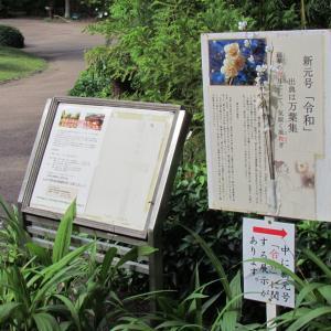 浜松・万葉の森公園から ~3~ 新元号を祝う