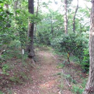 浜松・万葉の森公園から ~10~ 林を抜ければお寺