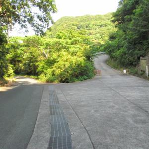 伊豆下田の寝姿山から ~1~ ここは観光地?