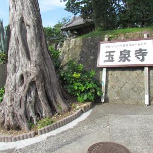 下田探訪 玉泉寺 ~1~ 日本最初の領事館