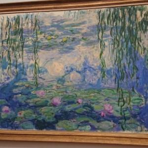 WaterLilies!睡蓮三昧!! in DenHaag