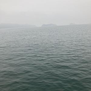 2021/1/22笠岡諸島で初のタイサビキ