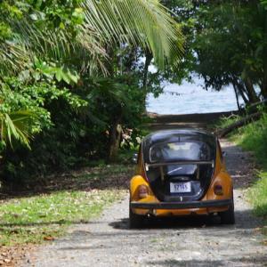 【コスタリカ】カウイータ国立公園+カリブ海写真