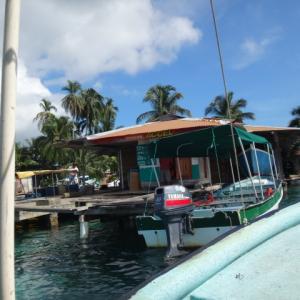 カリブ海でイルカウォッチング+スノーケリング+無人島ツアーが25ドルだった