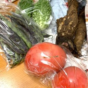 【好きなもの♪】美味しい野菜がきた♪ 大浦太ごぼう、食べたことありますか?