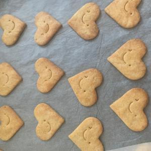 【激白】私が今まで作ってきた「甘酒クッキー」は、何だったんだ!