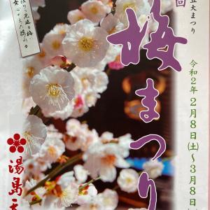 文京花の五大祭 梅まつりご奉納舞い