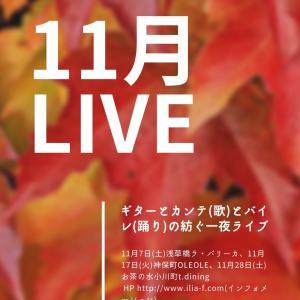 11月のライブ