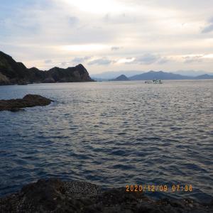 磯釣り 6回目 日振島