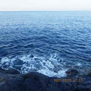 磯釣り 13回目 日振島