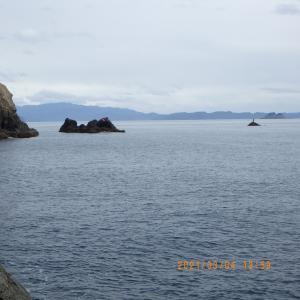 磯釣り 15回目 日振島