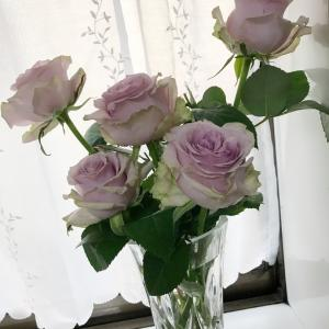 お花屋さん ありがとうございます(^^)