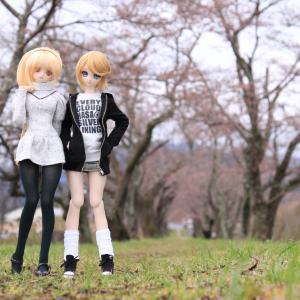 エリス、ミア 早春のお散歩。