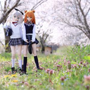 アキラ、メイ 春の下校風景的な?