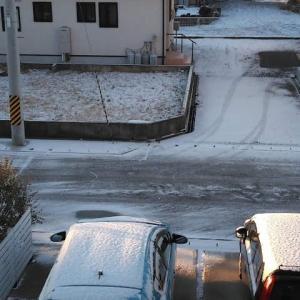やっと初積雪。