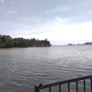松島で昼食