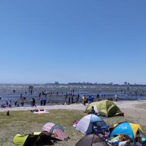 潮干狩り at  三番瀬海浜公園