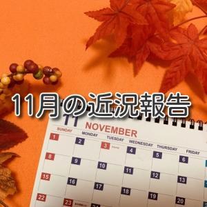 11月の近況報告