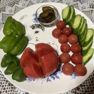 北陸からの新鮮野菜で 自炊