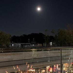 浄化:満月の月光浴