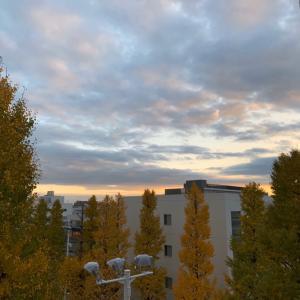 夕暮れの空の色