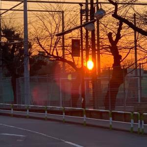 エレメント〜四大元素の暴走