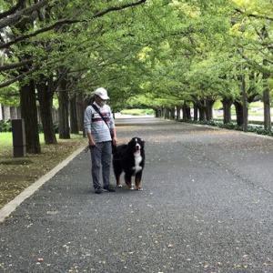 昭和記念公園♪
