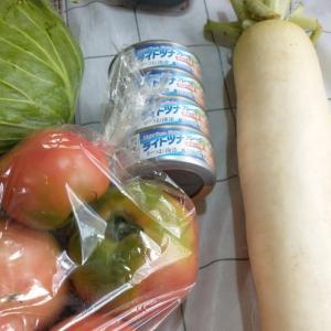 野菜買いに行きました