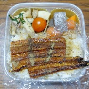 ある日のお弁当(アナゴ丼)