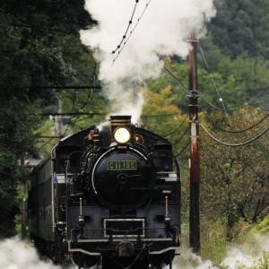 C11190 SL急行かわね路 川根温泉笹間渡発車