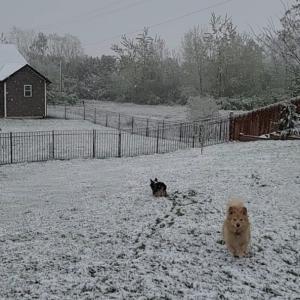 え? 雪? 4月ですけど?