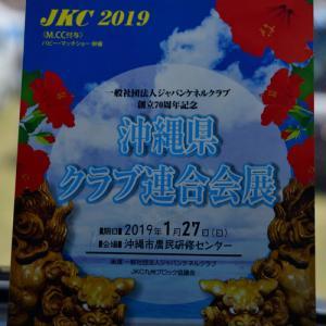 沖縄県クラブ連合会展 ・・・・