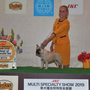 FCI Japan  International Dog Show  2019