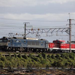 11月19日 DD200甲種輸送
