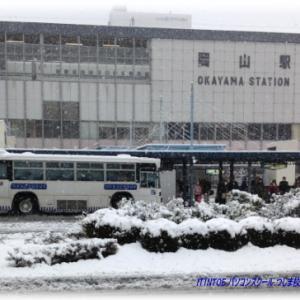 雪が降ってた頃の写真
