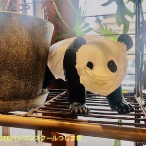 パンダのマスク