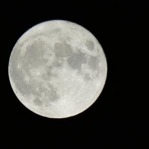 【魚座満月】開運アクションを分かりやすく、の巻
