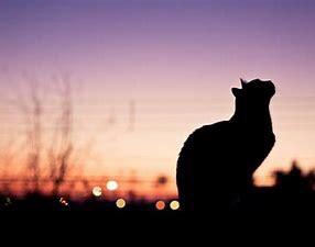 【募集中】おはなし会します☆やっぱりあなたと会いたいから