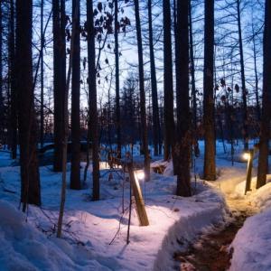 遅くなった日の入り・・夕暮れ時が光景が神秘的です。