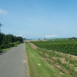何気ない中札内村の農村風景にも・・秋を感じますね!