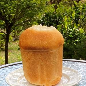 世界一美味しいパンを焼くー箱根でスローライフ‼️