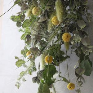 ドライフラワー花材販売も品揃えが多くなっています。