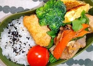 1/21 豚こまオイスターソース野菜炒め弁当~いくらあればいいんだろう
