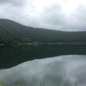静かな湖畔の森のかげから
