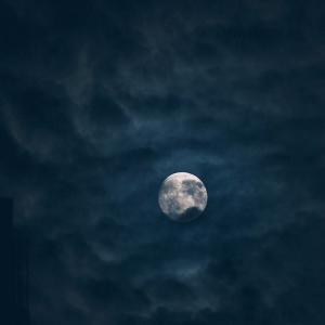 full moonだよ〜