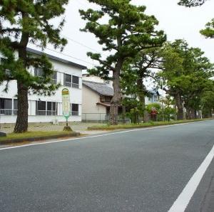 舞阪宿の松並木