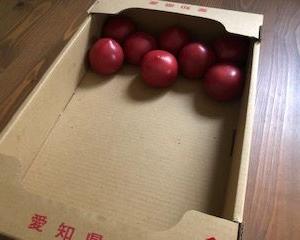 キム兄のトマト料理